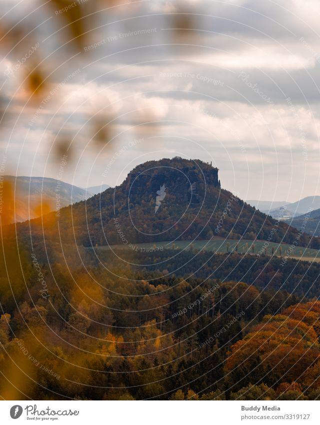 Kleiner Bärenstein, Sächsische Schweiz, Lohmen Himmel Natur blau grün Landschaft Baum Wolken Berge u. Gebirge schwarz gelb Deutschland orange braun Felsen gold