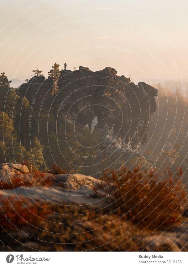 Kleine Ganz in der Bastei, Sächsische Schweiz, Lohmen Natur Landschaft Erde Himmel Wolkenloser Himmel Sonnenaufgang Sonnenuntergang Herbst Baum Gras Sträucher