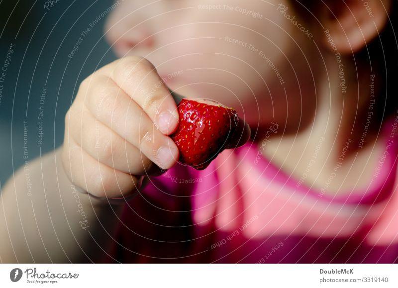 Kind hält Erdbeere in der Hand Lebensmittel Frucht Erdbeeren Mensch Mädchen Junge Finger 1 1-3 Jahre Kleinkind berühren festhalten frisch Gesundheit lecker rosa