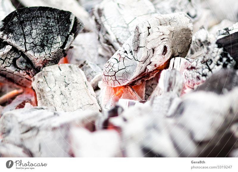 Hintergrundmuster Kohle schwelt aus nächster Nähe Wärme Schornstein heiß rot schwarz weiß schwarzer Hintergrund Brandwunde ausgebrannt calefy Holzkohle