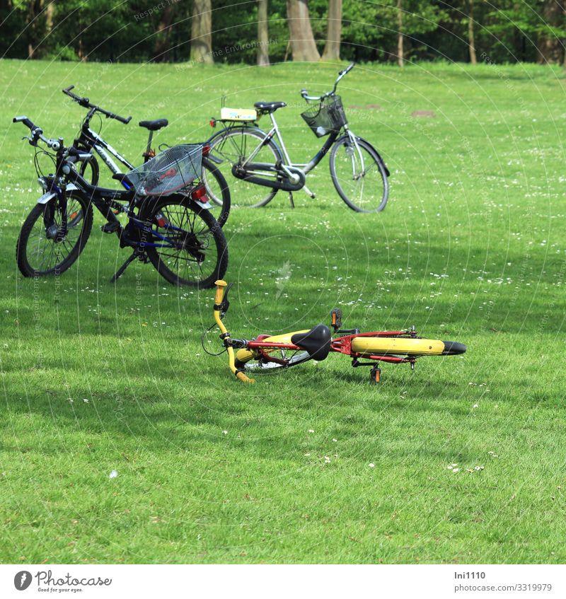 Fahrräder auf einer Wiese im Park Lifestyle Fahrradtour Sommer Natur Pflanze Schönes Wetter Gras Fahrradfahren blau gelb grün rot schwarz Ausflug Pause Erholung