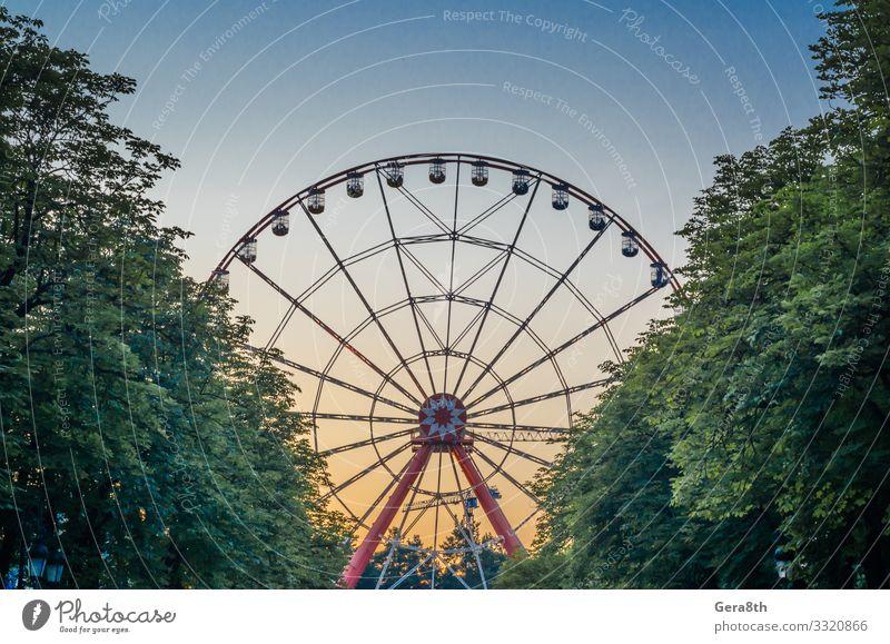 Riesenrad im Park gegen den blauen Himmel hinter Bäumen Freude Freizeit & Hobby Ferien & Urlaub & Reisen Entertainment Baum Taxi Metall Bewegung gelb rot Farbe