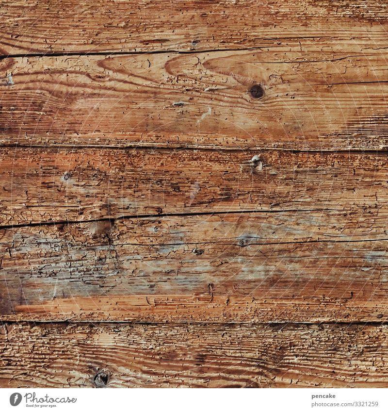 gut holz alt Holz Wand Mauer altehrwürdig nachhaltig Holzwand Holzhaus