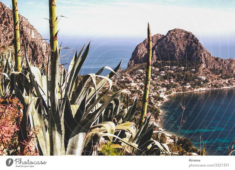 das Land der Sehnsucht mit der Seele suchen Landschaft Wasser Schönes Wetter Hügel Küste Meer Bucht maritim blau Panorama (Aussicht) Italien Klippe Mittelmeer