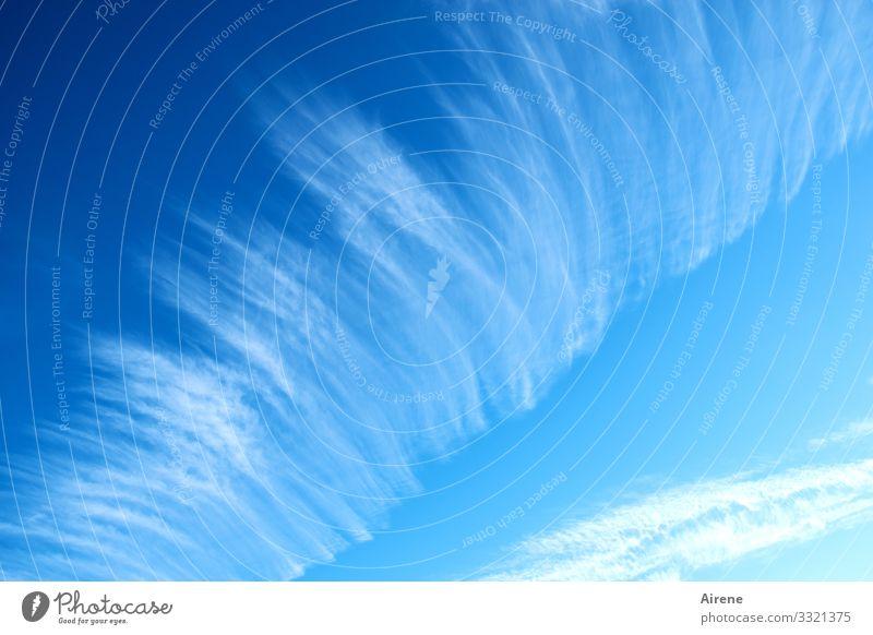 Wettervorhersage | Geschriebenes Urelemente nur Himmel Wolken Schönes Wetter hell blau weiß Freundlichkeit Sonne Streifen Zeile Muster vorhersagen Bedeutung