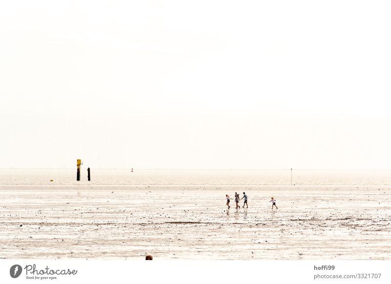 Spaziergang im Watt bei Sonne und Nebel am Morgen Mensch Familie & Verwandtschaft Freundschaft Menschengruppe Sand Wasser Wolkenloser Himmel Sonnenlicht Sommer