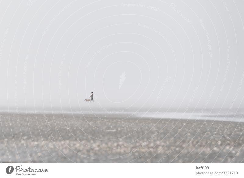 mal eben mit dem Hund .... Mensch Natur Sommer Erholung Tier Freude Ferne Strand Leben Küste Bewegung Freiheit Sand Stimmung Zufriedenheit