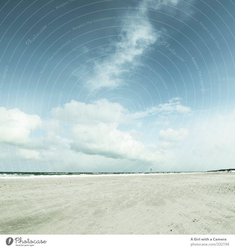 Zingst Umwelt Natur Landschaft Himmel Wolken Winter Schönes Wetter Küste Ostsee hell kalt blau Gedeckte Farben Außenaufnahme Textfreiraum links
