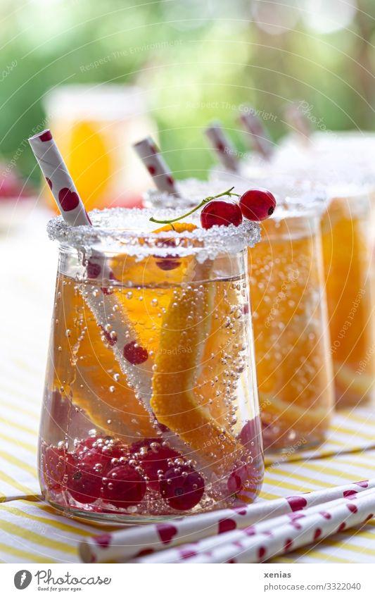 Detoxgetränke mit Orange und Johannisbeere Frucht Johannisbeeren Zucker Getränk Erfrischungsgetränk Trinkwasser Glas Trinkhalm Sommer Häusliches Leben Garten