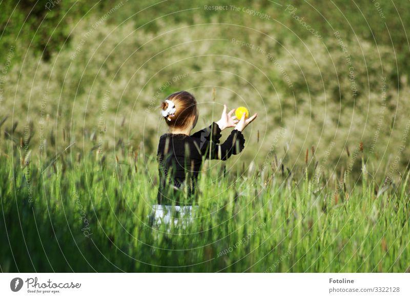 Ballspiel Mensch feminin Mädchen Kindheit Leben 1 8-13 Jahre Umwelt Natur Landschaft Pflanze Sommer Schönes Wetter Gras Wiese frei Fröhlichkeit hell natürlich
