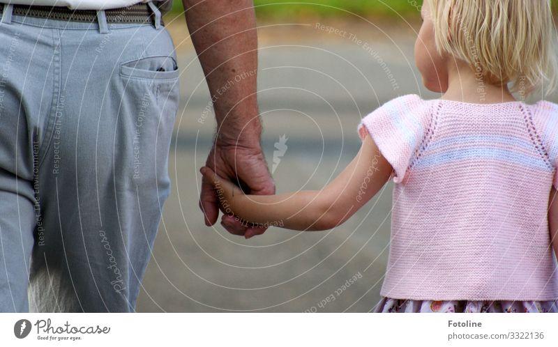 Opa und Enkelchen Mensch maskulin feminin Kind Mädchen Mann Erwachsene Männlicher Senior Großvater Familie & Verwandtschaft Kindheit Leben Kopf Haare & Frisuren