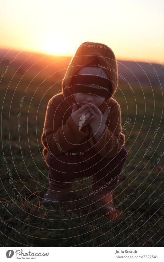 Sonnenuntergang Wiese Ups feminin Kind Kleinkind 1 Mensch 3-8 Jahre Kindheit Sonnenaufgang Sonnenlicht Winter Schönes Wetter Gras Feld Wolljacke Mütze Stiefel