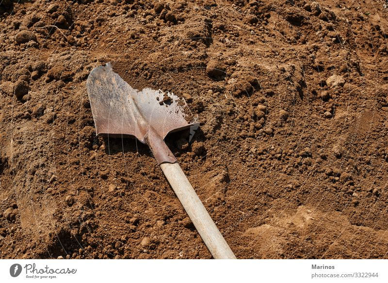 Schaufel auf dem Boden im Hintergrund.Gartenarbeit. Arbeit & Erwerbstätigkeit Werkzeug Frau Erwachsene Natur Erde Sand Metall braun schaufeln Graben Ackerbau