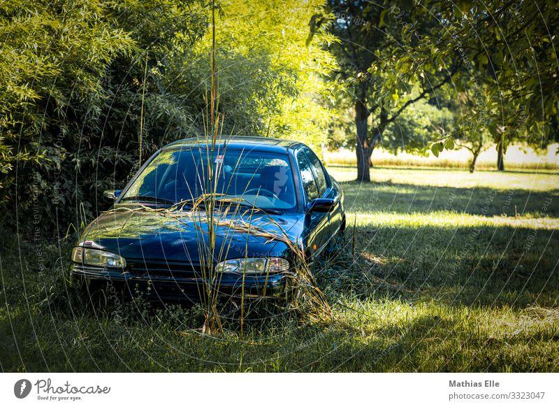 Altes Auto auf einer grünen Wiese Landschaft Pflanze Baum Gras PKW alt historisch kaputt retro trashig unbeständig Senior Güterverkehr & Logistik Rost verdorben