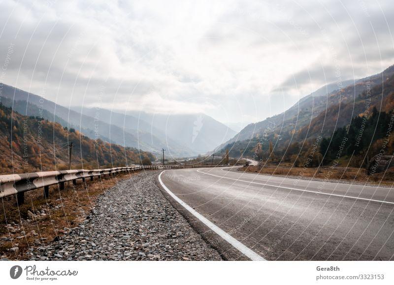Himmel Ferien & Urlaub & Reisen Natur Pflanze Landschaft Sonne Baum Wolken Berge u. Gebirge Straße Herbst gelb Wege & Pfade Tourismus Ausflug Nebel