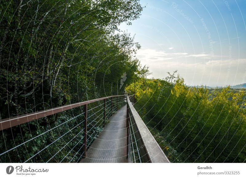 lange Hängeeisenbrücke in einer Schlucht in Georgien Ferien & Urlaub & Reisen Tourismus Ausflug Berge u. Gebirge Natur Landschaft Pflanze Himmel Wolken Horizont