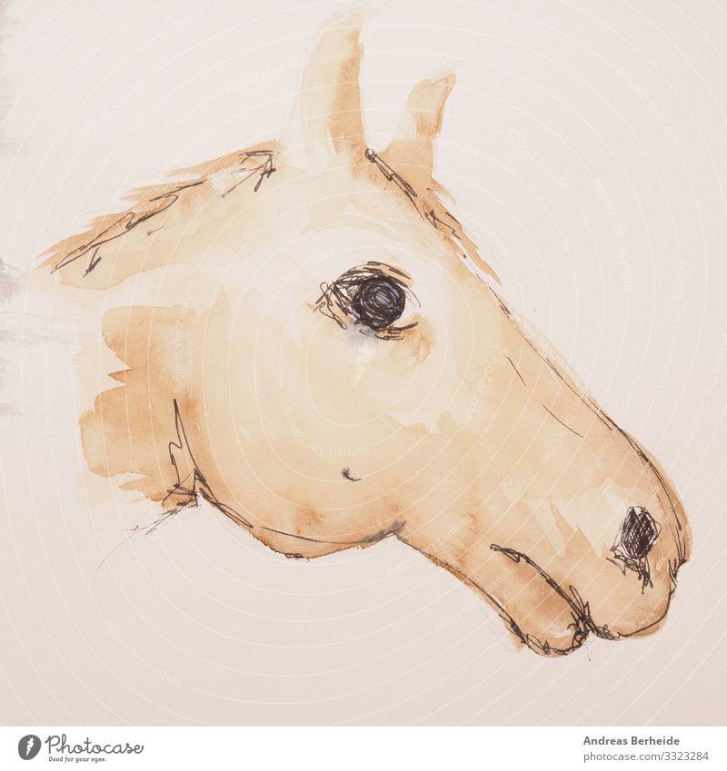 Aquarell Malerei Trakehner Portrait Freizeit & Hobby Handwerk Haustier Nutztier Pferd Tiergesicht 1 Papier zeichnen Kreativität riding horse Lebewesen