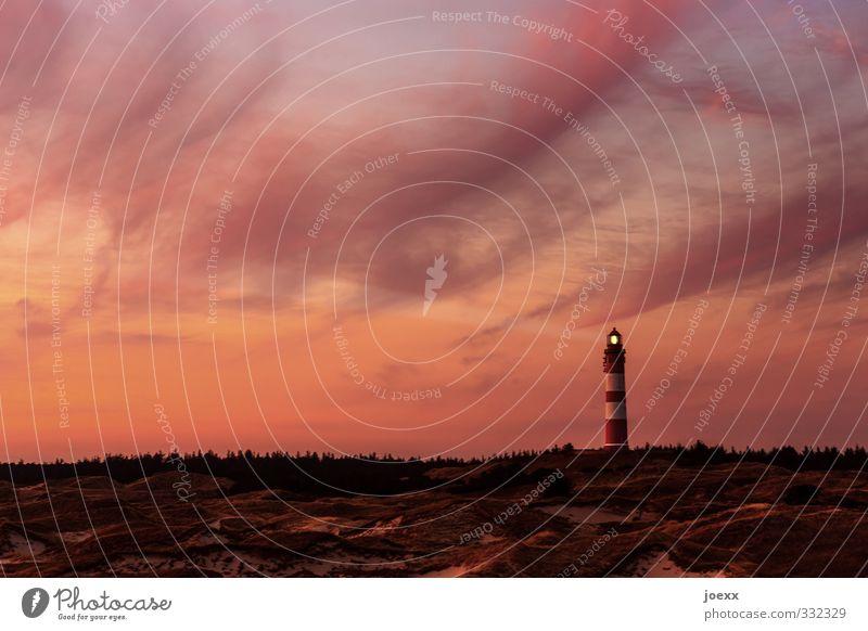 Du und ich Himmel Ferien & Urlaub & Reisen Sommer ruhig Wolken schwarz Wald Horizont braun orange Idylle Insel Schönes Wetter Hoffnung Hügel Leuchtturm