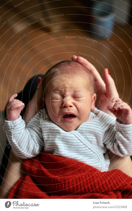 NEUGEBORENES - NIESEN Gesundheit Gesundheitswesen Kindererziehung Kindergarten maskulin Baby Kindheit 1 Mensch 0-12 Monate braun rot Sicherheit Schutz