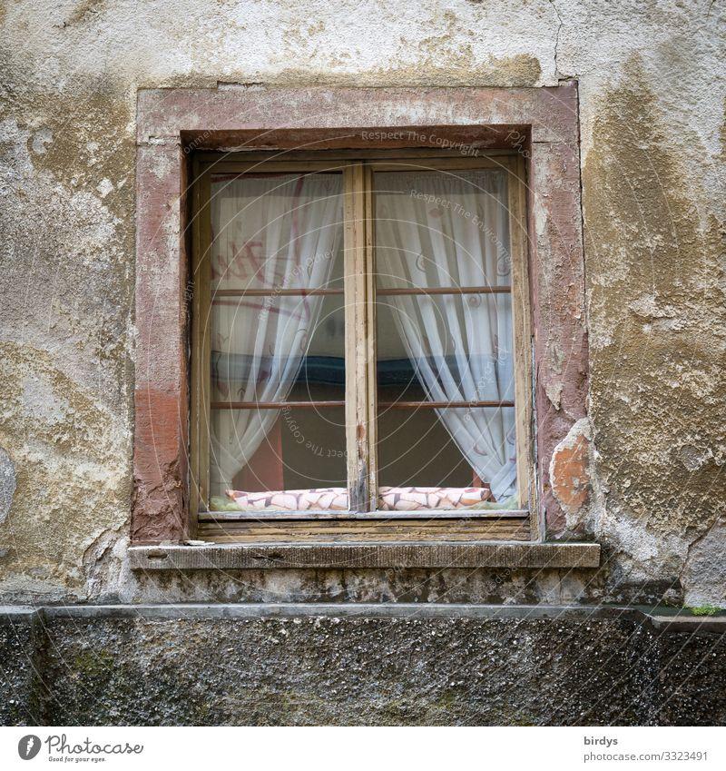 irgendwie traurig Haus Fenster alt authentisch kaputt Originalität trist braun grau Einsamkeit Senior Armut Gesellschaft (Soziologie) stagnierend Traurigkeit