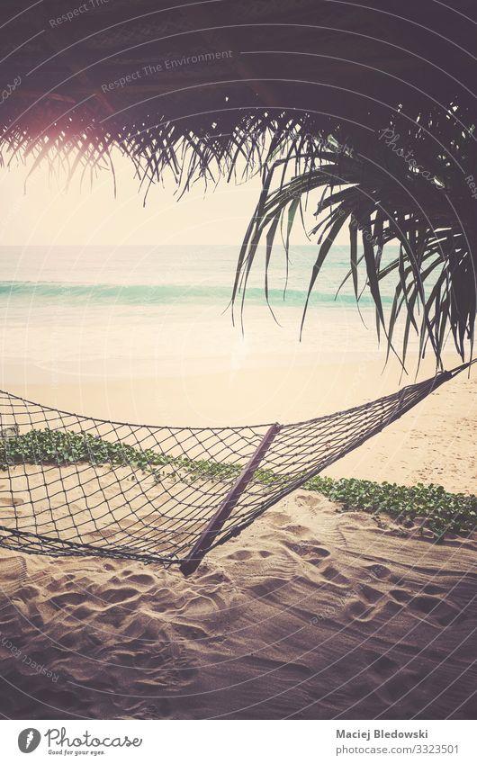 Tropischer Strand mit Hängematte, mit Retro-Farbtonung. exotisch Erholung Ferien & Urlaub & Reisen Tourismus Freiheit Sommer Sommerurlaub Sonne Sonnenbad Meer