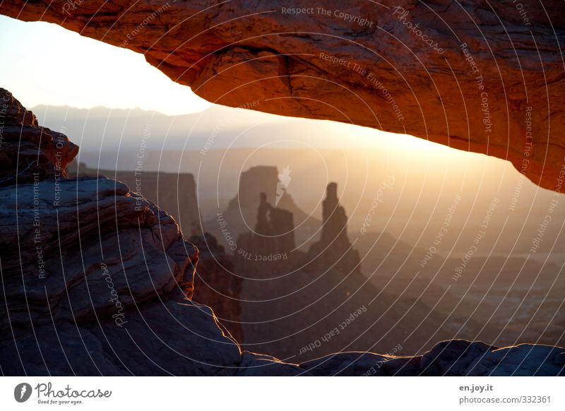 Washerwoman Arch Canyonlands Umwelt Natur Landschaft Sonnenaufgang Sonnenuntergang Felsen Schlucht außergewöhnlich fantastisch Ferne braun gold orange Fernweh