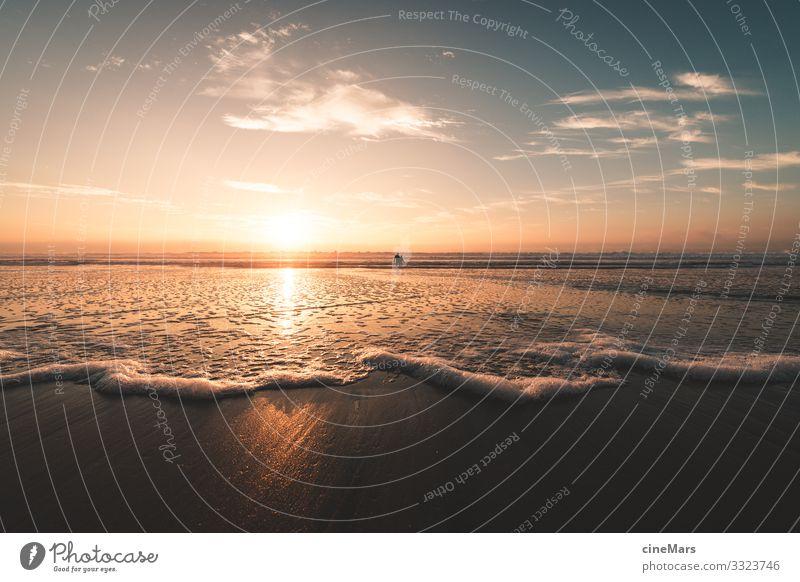 sunny westcoast Umwelt Natur Wasser Himmel Wolken Sonne Sonnenaufgang Sonnenuntergang Sonnenlicht Sommer Schönes Wetter Küste Strand Meer ästhetisch einfach