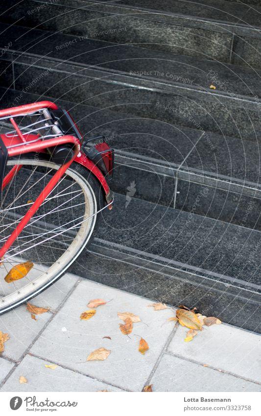 rotes Fahrrad Stadt fahren sparsam nachhaltig Treppe Herbst Blatt gelb Jahreszeiten schwarz parken Bewegung Verkehr Stadtleben Straße Bürgersteig Natur
