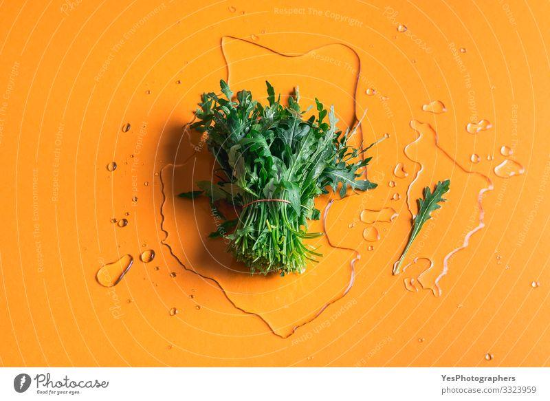 Rucola-Bündel auf Wasserspritzer auf orangem Hintergrund Gemüse Salat Salatbeilage Bioprodukte Vegetarische Ernährung Diät Gesunde Ernährung Garten Gartenarbeit