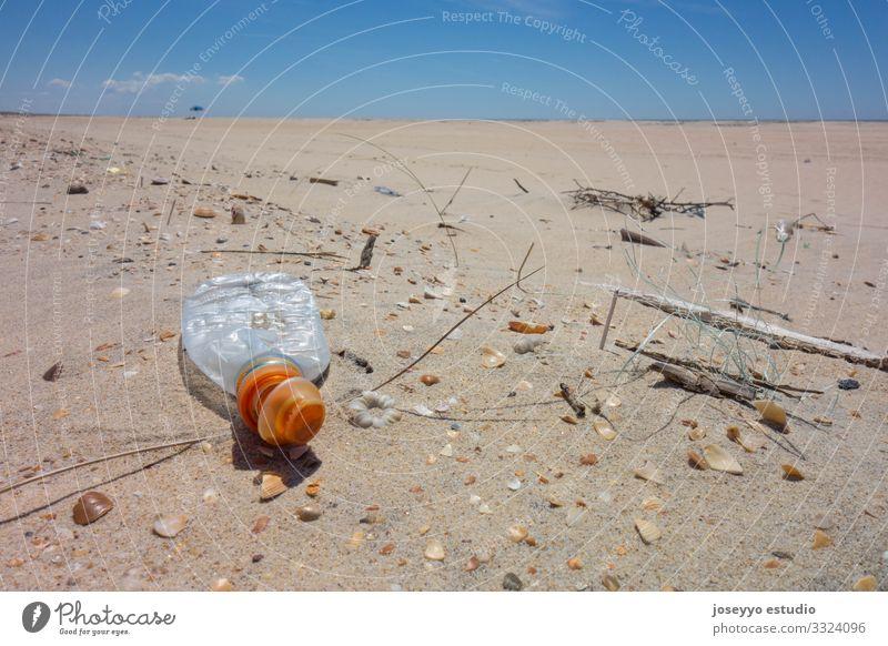 Plastikflasche auf dem Strandsand. Aktivismus Erkenntnis Flasche Küste abholen Bildung Umwelt frei Zukunft Mikrokunststoff Bewegung Natur Meer Paket Pickup Erde