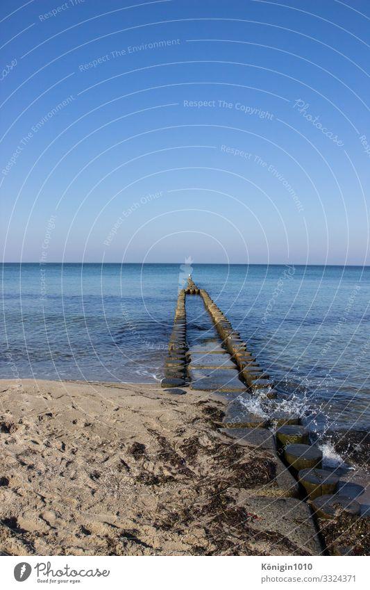 Buhnen im blauen Wasser Natur Landschaft Sand Himmel Wolkenloser Himmel Horizont Sommer Schönes Wetter Küste Strand Ostsee Insel genießen maritim natürlich