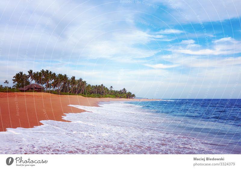 Wunderschöner tropischer Strand kurz vor Sonnenuntergang. exotisch Erholung Ferien & Urlaub & Reisen Tourismus Ausflug Abenteuer Ferne Freiheit Sommer