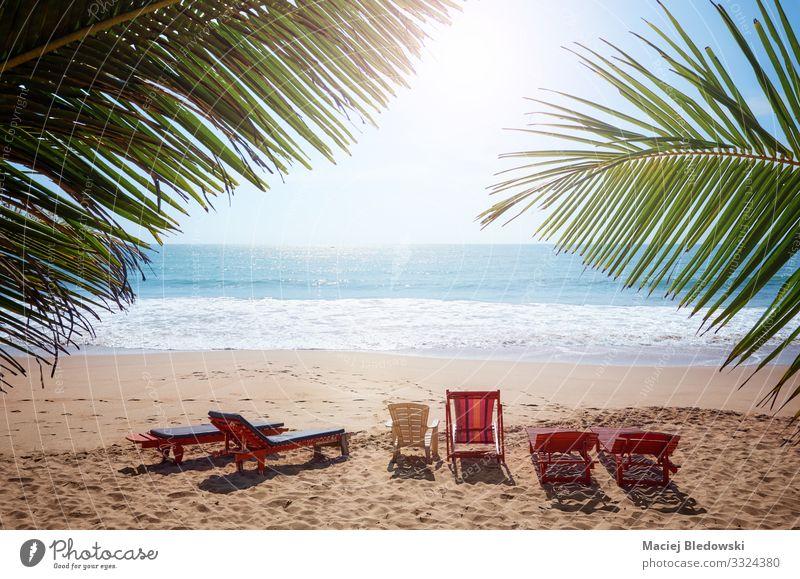 Leere Sonnenbänke an einem tropischen Strand. exotisch Erholung Ferien & Urlaub & Reisen Tourismus Ausflug Sommer Sommerurlaub Sonnenbad Meer Insel Natur