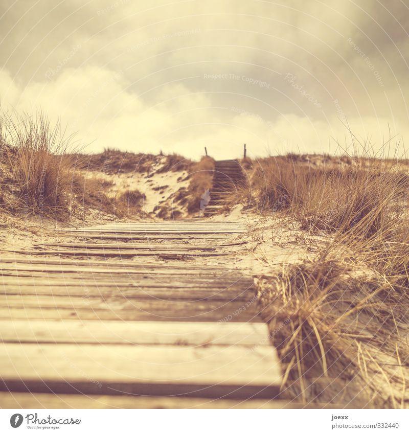 Zu Dir Himmel Natur Landschaft Wolken gelb Wege & Pfade braun Insel Hügel