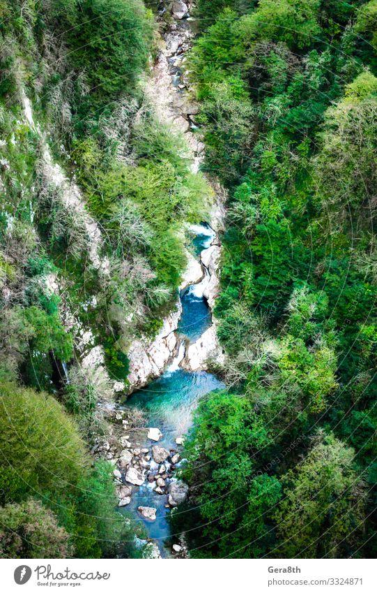Luftaufnahme einer Bergschlucht mit Fluss und Wald in Georgien Ferien & Urlaub & Reisen Tourismus Berge u. Gebirge Natur Landschaft Pflanze Herbst Klima Baum