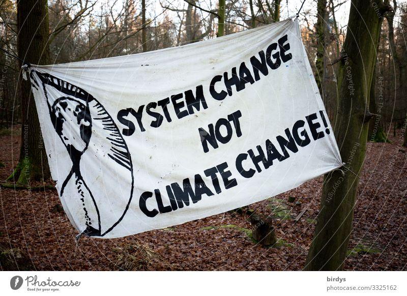 Veränderung tut Not Herbst Winter Klimawandel Wald Schriftzeichen Transparente kämpfen Kommunizieren authentisch positiv rebellisch klug braun schwarz weiß