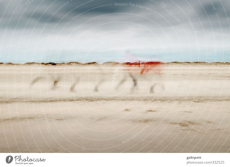 Rømø | Bewegungsstudie Sand Himmel Frühling Herbst Küste Strand Nordsee Ostsee laufen außergewöhnlich Geschwindigkeit Stress Mobilität stagnierend