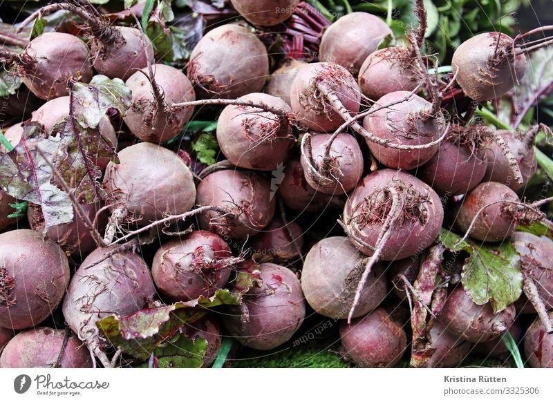 rote bete Lebensmittel Gemüse Ernährung Bioprodukte Vegetarische Ernährung Slowfood kaufen Natur Pflanze Nutzpflanze verkaufen frisch Gesundheit lecker