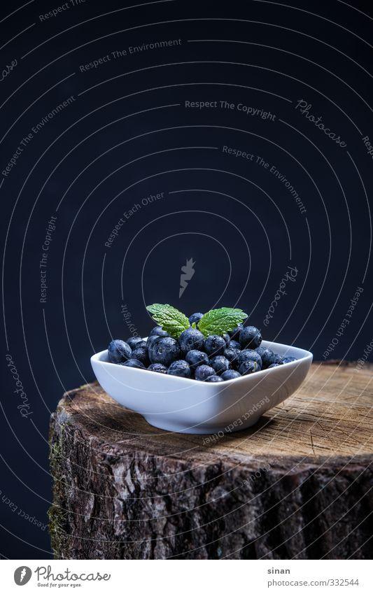 Blaubeeren auf Baum Natur blau schön weiß Sommer Holz Gesundheit braun Lebensmittel Frucht Gesundheitswesen Lifestyle frisch Ernährung rund Küche