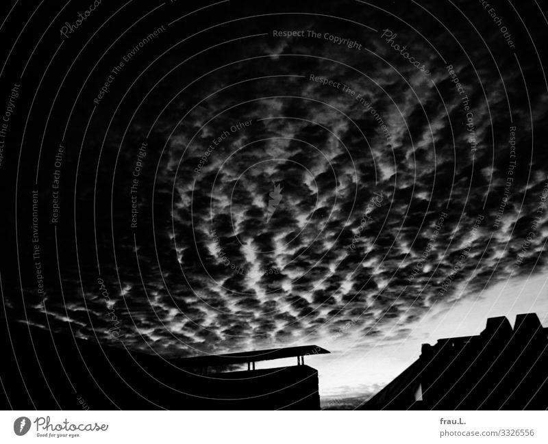 Abendhimmel Himmel Sonnenaufgang Sonnenuntergang Hamburg Hafenstadt Haus Dach Schornstein außergewöhnlich dunkel schön Horizont Oberlicht Schwarzweißfoto