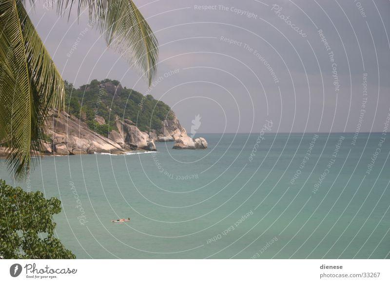 the beach/top secret Natur Sonne Meer Strand Ferien & Urlaub & Reisen Sand Felsen Palme Thailand