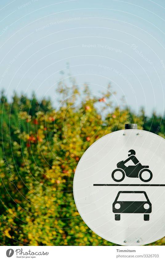 Verkehrsschild, erblasst Umwelt Natur Baum Blatt Wald Verkehrszeichen Metall Zeichen Schilder & Markierungen blau gold grün schwarz weiß kraftlos Farblosigkeit