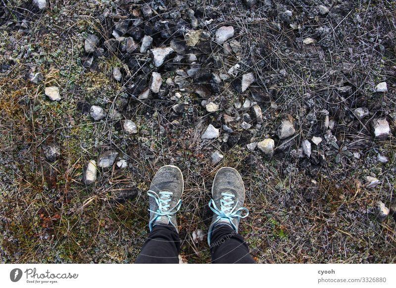 frostiger Spaziergang Fuß Pflanze Erde Winter Eis Frost beobachten frieren laufen wandern frei kalt trist trocken Abenteuer Einsamkeit einzigartig Freiheit
