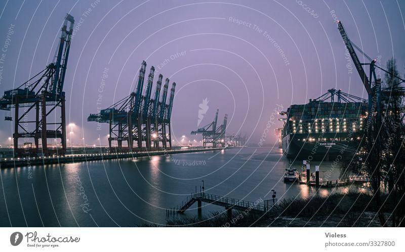 und es nieselt immer noch Hafenstadt Güterverkehr & Logistik Schifffahrt Containerschiff Wasserfahrzeug Hamburger Hafen Krähne dunkel maritim Nebel Regen Elbe