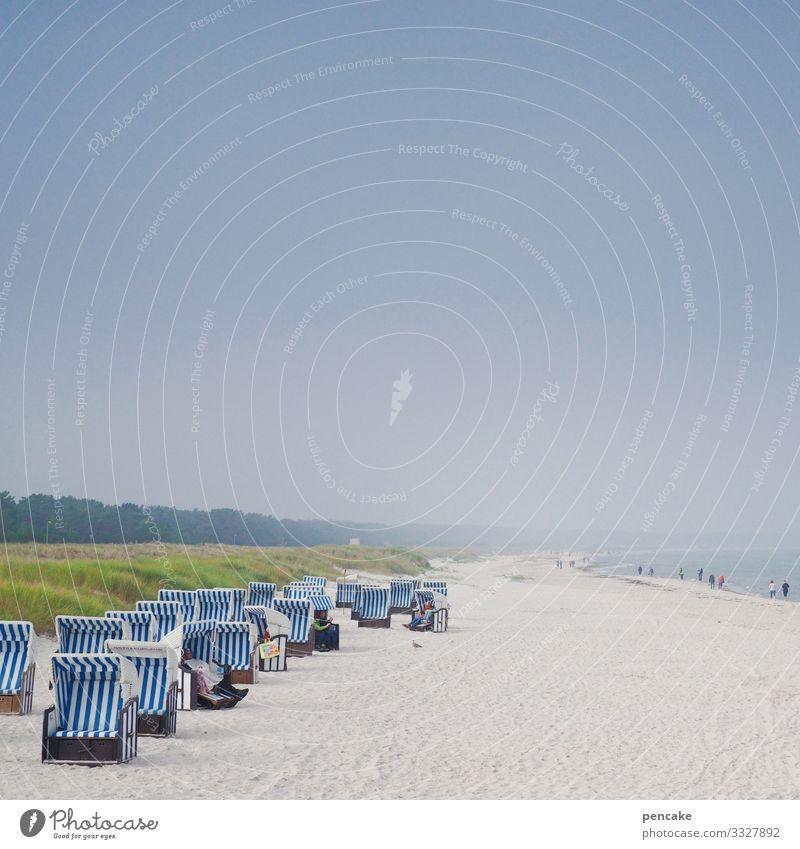 nachbarschaften   zu mir oder zu dir? Ostsee Darß Sand Nachbarschaften Feriensbekanntschaft Sommer Strand Badeurlaub Wasser Strandkorb Ferien & Urlaub & Reisen