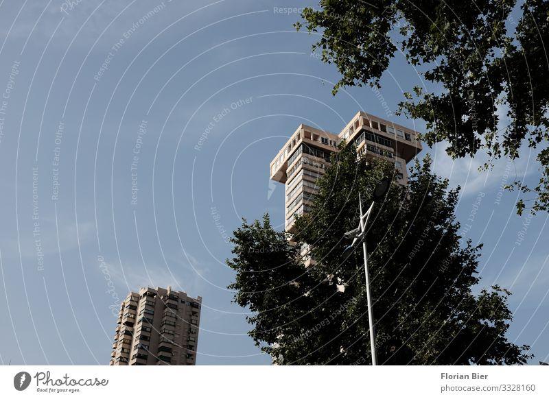 Mein Leben im Baumhaus Umwelt Himmel Klimawandel Blatt Stadt überbevölkert Haus Traumhaus Hochhaus Fassade Balkon Fenster Dach Häusliches Leben eckig gigantisch