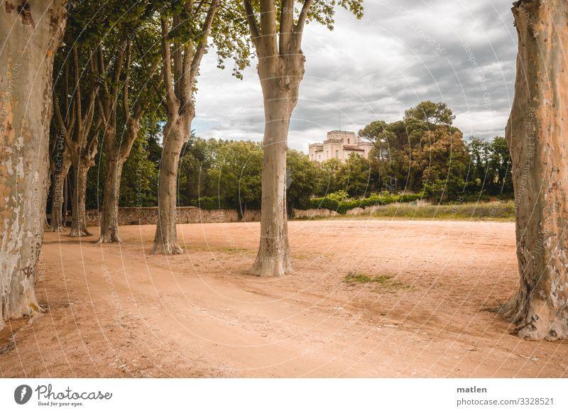 alte Villa Allee Alleebäume Sand Wolkenhimmel Wege & Pfade braun grün grau Katalonien