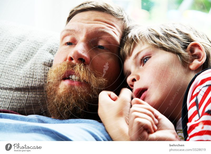 papa-sohn-kuschelzeit zuhause bleiben Buch lesen Schule lernen Literatur Kind Junge Eltern Erwachsene Vater Familie & Verwandtschaft Kindheit Auge Gesicht