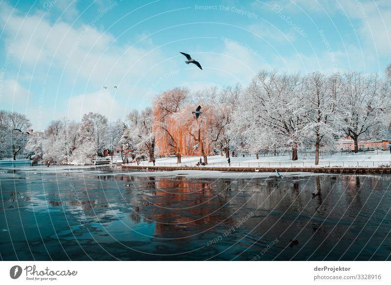 Berlin am Landwerkanal im Winter Zentralperspektive Starke Tiefenschärfe Kontrast Schatten Licht Morgen Textfreiraum Mitte Textfreiraum unten Textfreiraum oben