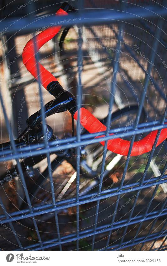 hinter gitter Freude Freizeit & Hobby Sport Fahrradfahren Rennrad Lenker Fahrradlenker rot Gitter Farbfoto Außenaufnahme Tag Licht Schatten Sonnenlicht